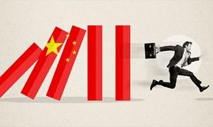 Quỹ đầu cơ Kingsmead rời bỏ chứng khoán Trung Quốc, chuyển hướng sang Việt Nam