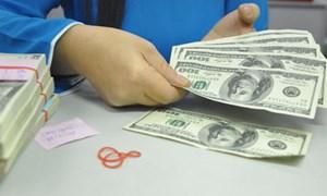 Kiều hối về TP. Hồ Chí Minh đạt gần 2,9 tỷ USD