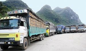 Việt Nam tích cực thực thi cam kết TFA