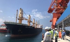 Xây dựng kinh tế biển xanh - trọng điểm cho phát triển bền vững biển Việt Nam