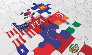Lãng phí cơ hội từ FTA