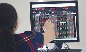 Cuộc đào thải những cổ phiếu kém chất lượng
