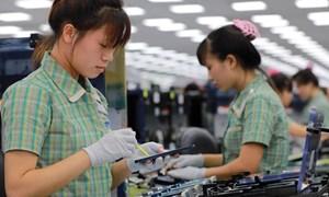 Trụ cột nào cho phát triển kinh tế của Việt Nam?