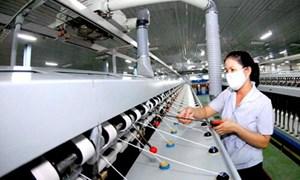 Xuất khẩu dệt may hướng tới đỉnh cao mới