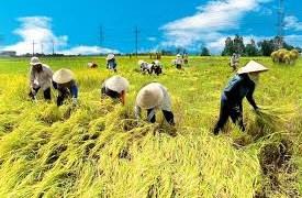 Nông nghiệp góp phần quan trọng kiềm chế lạm phát