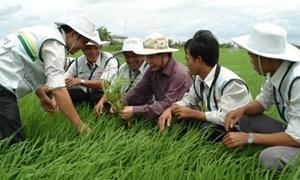 Bộ Tài chính quy định mức thu, chế độ thu, nộp và quản lý sử dụng phí, lệ phí trong lĩnh vực bảo vệ thực vật