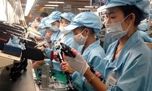 Năm 2013, nền kinh tế Việt Nam sẽ có những chuyển biến tích cực