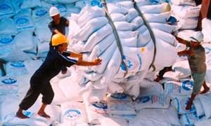 Năm 2013, dự kiến xuất khẩu khoảng 7,5 triệu tấn gạo