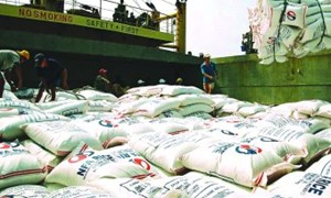 Hiệp định thương mại tự do: Lực đẩy tăng xuất khẩu