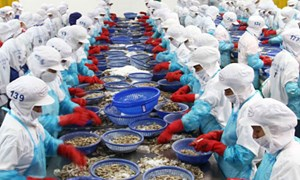 Xuất khẩu nông, lâm-thuỷ sản: Tín hiệu vui đầu năm