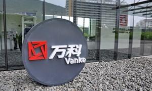 Đại gia địa ốc Trung Quốc tấn công thị trường Mỹ