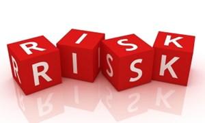 Rủi ro từ nhập khẩu nguyên liệu
