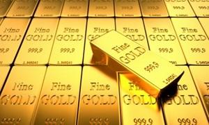 """Nên bình tĩnh trước sự """"hoảng loạn"""" của giá vàng"""
