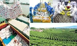 Nông nghiệp cần được xác định như động lực để phát triển kinh tế