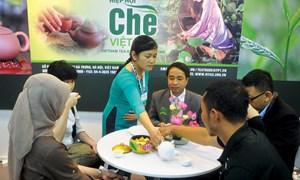 Xây dựng thương hiệu chè Việt đẩy mạnh xuất khẩu