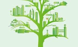 Chậm lại để phát triển bền vững