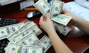 Có nên cho thuê tài chính bằng ngoại tệ?