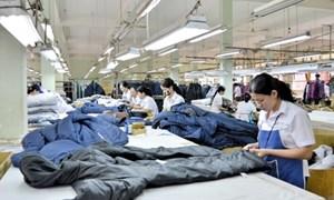 Doanh nghiệp dệt may nào hưởng lợi từ TPP?