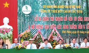Cao su Lộc Ninh: 40 năm chặng đường phát triển