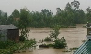 365 tỷ đồng hỗ trợ khắc phục hậu quả bão số 8 và số 10