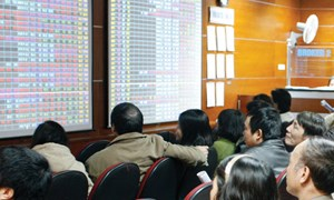 Tháng 12, đầu tư cổ phiếu ngành nào?