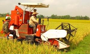 Chính sách mới thu hút doanh nghiệp đầu tư vào nông nghiệp, nông thôn
