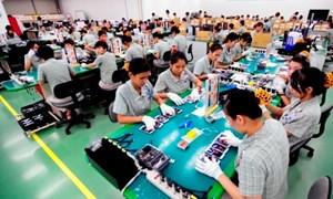 Việt Nam chưa tận dụng được lợi thế để xuất khẩu sang Nhật