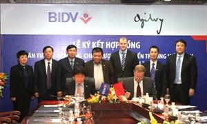 BIDV hợp tác với Ogilvy&Mather Việt Nam thực hiện dự án Tư vấn xây dựng chiến lược phát triển thương hiệu