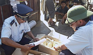 Tăng quyền cho Hải quan để chống buôn lậu là cần thiết