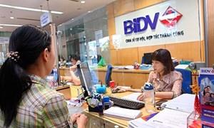 BIDV hỗ trợ doanh nghiệp ngành Dược