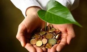 Tìm kiếm các giải pháp tài chính cho