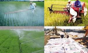 Đề xuất sản phẩm trồng trọt chưa qua chế biến được miễn thuế giá trị gia tăng