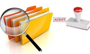 Thể chế hóa quy định về kiểm toán Nhà nước