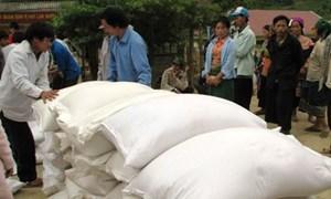 Định mức chi phí xuất gạo dự trữ hỗ trợ học sinh tỉnh Sơn La