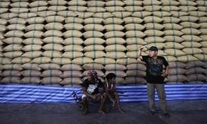 Nguy cơ cuộc chiến giá gạo tại châu Á