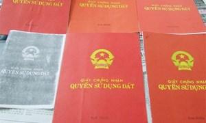 Chủ tịch Hội đồng quản trị dùng sổ đỏ giả vay vốn ngân hàng