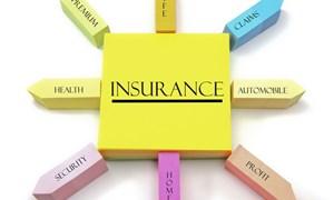 Thị trường bảo hiểm Việt Nam: Nhìn lại 2013, dự báo 2014
