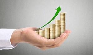 Vì sao nhà đầu tư Nhật đầu tư vào quỹ mở Việt Nam?