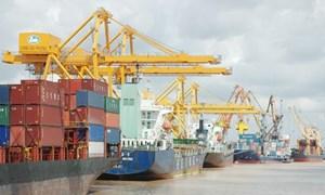 Hấp dẫn cổ phiếu cảng biển