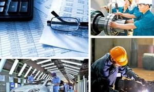 Hoạt động doanh nghiệp Việt Nam - nhìn lại giai đoạn 2008 – 2013