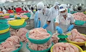 Giải đáp vướng mắc về thuế cho doanh nghiệp thủy sản