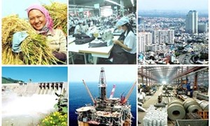 Bộ Tài chính triển khai hiệu quả Nghị quyết số 01/NQ-CP