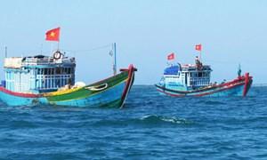 Cụ thể hóa chính sách hỗ trợ ngư dân