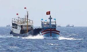 Tàu Trung Quốc đã đâm hỏng 24 tàu chấp pháp của Việt Nam