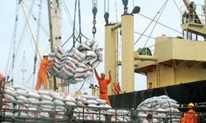 Siết chặt hoàn thuế Giá trị gia tăng đối với doanh nghiệp xuất khẩu gạo
