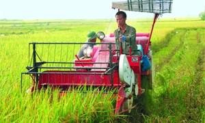 Huy động và gắn kết các nguồn lực xây dựng nông thôn mới - Những vấn đề đặt ra