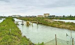 Bộ Tài chính ban hành Thông tư hướng dẫn thu tiền thuê đất, thuê mặt nước