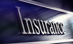Đã có cơ sở pháp lý cho bảo hiểm bảo lãnh