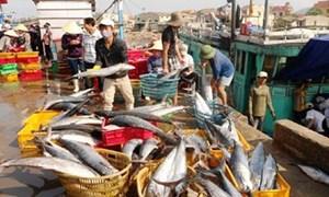 Sử dụng hiệu quả kinh phí phát triển nguồn lợi thủy sản