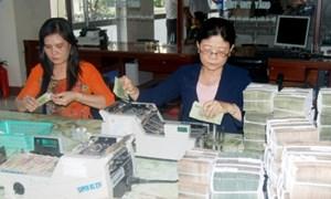 Đảng bộ Kho bạc Nhà nước tỉnh Cà Mau xứng đáng với vai trò hạt nhân chính trị ở đơn vị